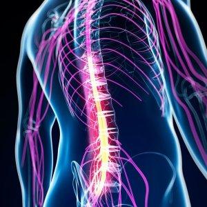 Злокачественные опухоли спинного мозга - причины, симптомы, диагностика и лечение, прогноз