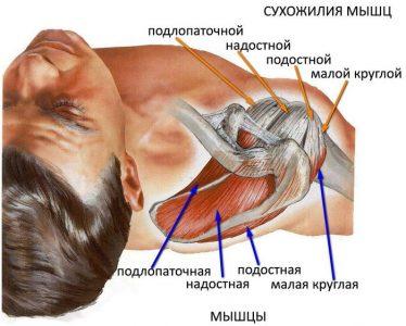 Изображение - Повреждение плечевого сустава лечение и сроки восстановления razriv-svyazok-4-374x300