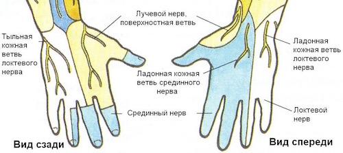 Почему немеет безымянный палец на правой руке